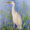 Egret Morning Print by Anna Skaradzinska