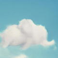 Elephant in the Sky Print by Amy Tyler