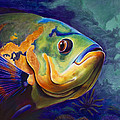 Enchanted Reef Print by Scott Spillman