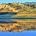 End of Summer Reflections 2 Print by Diane Alexander