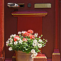 Entrance door with flowers Poster by Heiko Koehrer-Wagner