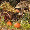 Essence of Autumn  Print by Doug Kreuger