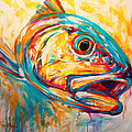 Expressionist Redfish Poster by Mike Savlen
