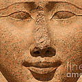 Face Of Hathor Print by Stephen & Donna O'Meara