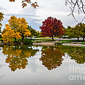 Fall Fort Collins Print by Baywest Imaging