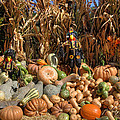Fall Harvest Print by Joann Vitali