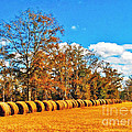 Fall Hayfield Poster by M J Glisson