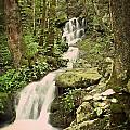 Falls In The Smokies Poster by Marty Koch
