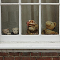 Family of teddy bears on the window. Poster by Kiril Stanchev