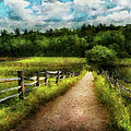 Farm - Fence - Every journey starts with a path  Poster by Mike Savad