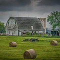 Farm Scene Poster by Paul Freidlund
