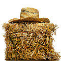 Farmer Hat on Hay Bale Poster by Olivier Le Queinec