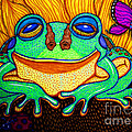 Fat Green Frog on a Sunflower Print by Nick Gustafson