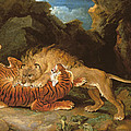 Fight Between A Lion And A Tiger, 1797 Poster by James Ward