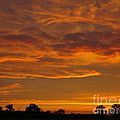 Fire in the Sky Print by Ann Horn