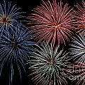 Fireworks Extravaganza 4 Print by Steve Purnell