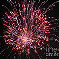 Fireworks For All Print by Terry Weaver