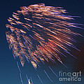 Fireworks Series I Print by Suzanne Gaff