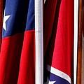 Flags of the North and South Print by Joe Kozlowski
