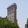 Flat Iron Building Print by Bill Cannon