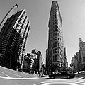 Flat Iron Fish Eye Print by Mike Lindwasser Photography