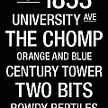 Florida College Town Wall Art Poster by Replay Photos