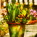 Flower - Daffodil - A pot of daffodil's Poster by Mike Savad