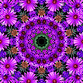 Flower Power Print by Kristie  Bonnewell