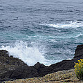 Flowers and Crashing Waves Print by Bruce Gourley
