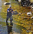 Fly Fishing for Trout Print by Nava Jo Thompson