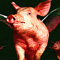 Flying Pigs v1 Print by Wingsdomain Art and Photography
