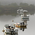 Foggy Moorings Poster by Carl Jacobs