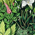 Foliage Print by Catherine Abel
