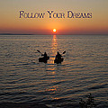 Follow Your Dreams Poster by Aimee L Maher Photography and Art