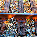 Forgotten - Abandoned Shoe On RailRoad Tracks Poster by Sharon Cummings