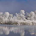Frosted Print by Michael Van Beber