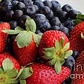 Fruit - Strawberries - Blueberries Poster by Barbara Griffin
