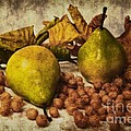 Fruits Poster by Angela Doelling AD DESIGN Photo and PhotoArt