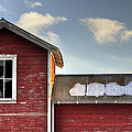 Ft Collins Barn 13493 Print by Jerry Sodorff