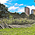 Garden with Bamboo Garden Fence in Battery Park in New York City-NY Print by Ruth Hager