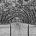 Gateway to the Old South bw Poster by Steve Harrington