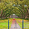 Gateway to the Old South paint Print by Steve Harrington