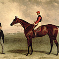 Gladiateur with Harry Grimshaw Up and His Owner Count Frederic de Lagrange Print by Harry Hall