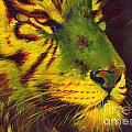 Glowing Tiger Poster by Summer Celeste