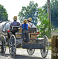 Going To Market Print by Paul Mashburn