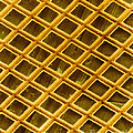 Gold Electron Micrograph Grid Print by David M. Phillips