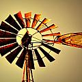 Golden Light Windmill Print by Marty Koch