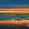 Golden Pacific Print by Robert Bales