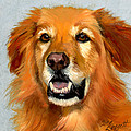 Golden Retriever Dog Print by Alice Leggett