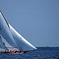 GRACE UNDER SAIL Poster by Skip Willits